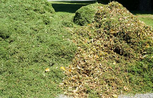 Gartenabfall - Container für Grünabfall